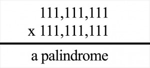 DidYouKnowPalindrome